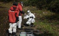 Greenpeace warns of high radiation levels at Olympic venues in Fukushima