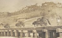 Joseon bridges - a path to good health