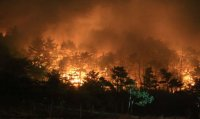 Goseong forest fire mostly extinguished: authorities