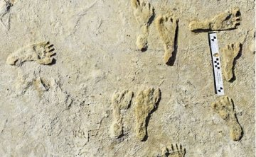 Ancient footprints rewrite humanity's history in the Americas