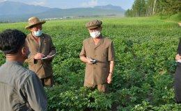 North Korea warns of heat wave's impact on crops