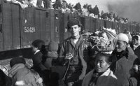 Red Cross photos offer glimpse of life during Korean War [PHOTOS]