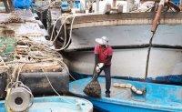 Migrant workers work 50 hours per week on average: report