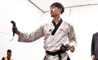 Want to learn taekwondo poomsae online?