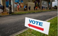 US early voting crosses record 30 million mark