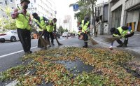 Local governments conduct fight against smell of ginkgo nuts