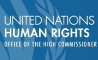 Samsung, LG perplexed by UN allegations of Uyghur rights violation