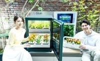 LG Electronics launches indoor plant cultivator 'tiiun'