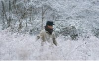 'News from Nowhere' peeks into DMZ's most secluded village to ponder human conflict, isolation