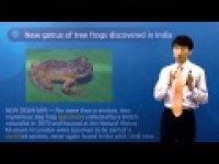 [Today's topic news] 인도에서 새로운 나무 개구리 속(屬) 발견