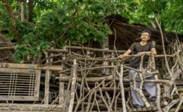 Japanese man builds treehouse in Korea to realize childhood dream