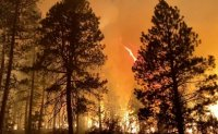 'Extreme' wildfires and heavy smoke grip western US and Canada