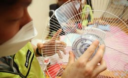 New fans for hot weather