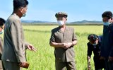 North Korean paper calls for speedy harvests to minimize loss from natural disasters