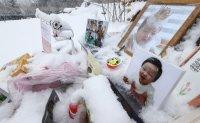 Inexcusable deaths of children in Korea