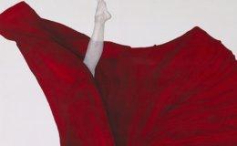 Artist captures tenderness, strength of female body in silks