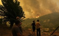 Greece wildfires: New blazes burning outside of Athens