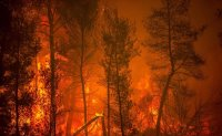 World shudders at 'terrifying' UN climate report