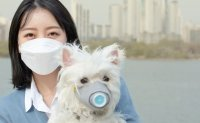 Polled citizens, experts prioritize fine dust in environmental policies