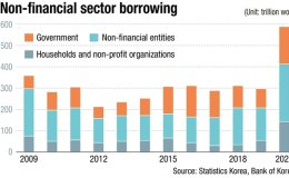 Non-financial borrowing by gov't, households surged last year