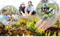 [ANALYSIS] RDA fights poverty, food scarcity globally