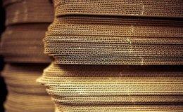 Tailim Paper IPO draws controversy