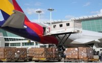 Will Asiana sell long-haul business to Korean Air?