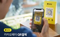 Kakao Pay confirms IPO has been delayed