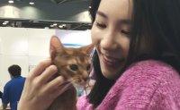 ON THE SPOT - Korea's largest pet industry exhibition K-PET fair 2018
