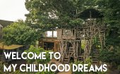 How a treehouse saved Mr. Mizuno's life